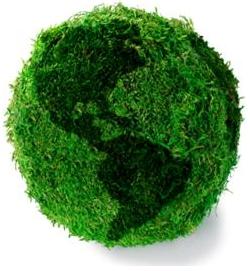 greenfuzz.jpg